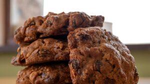 Arrangement of chocolate cookies